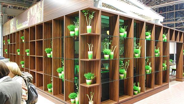 pflanzen-koelle-wiesbaden_001